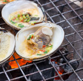 Oyster  on the grill. Oyster butter on the grill Stock Photography