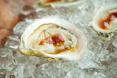 Oyster half shell Royalty Free Stock Photos