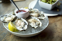 Oyster on ice Royalty Free Stock Photo