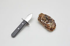 Oyster and Knife Royalty Free Stock Images