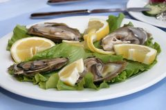 Oyster with lemon Stock Photos