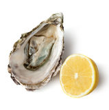 Oyster and lemon. Isolated on white background Royalty Free Stock Photo
