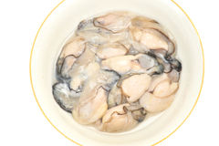 Oyster Meat Stock Photos