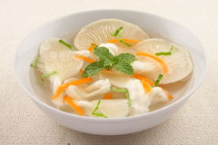 Oyster mushroom clear  soup  . Stock Image