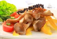 Oyster mushroom salad Royalty Free Stock Photography