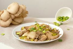 Oyster mushroom wiht leek on the plate Royalty Free Stock Image