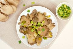 Oyster mushroom wiht leek on the plate Stock Photography
