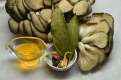 Oyster mushrooms: the ingredients for the marinade royalty free stock photography