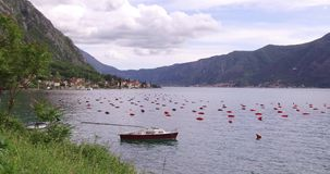 Oyster farming in Montenegro. Oyster and mussel farming with traps and buoys in Boka-Kotor bay, Montenegro, the Adriatic coast in the springtime. Mountains in stock video