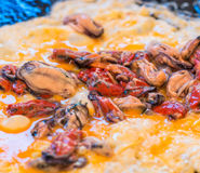 Oyster mussel and omelette with chilli sauce Royalty Free Stock Image