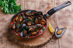 Oyster mussels in red sauce Stock Photography