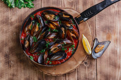 Oyster mussels in red sauce Stock Image