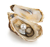 Oyster with pearls isolated on white Royalty Free Stock Photography