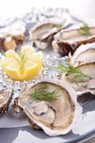 Oyster platter Royalty Free Stock Photography