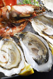 Oyster with prawn Royalty Free Stock Images