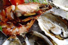 Oyster with prawn Stock Images