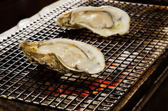 Oyster roast. Japanese food,fire Stock Images