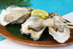 Oyster. It is a rock oyster produced in Japan Stock Images