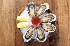 Oyster on round wooden bowl Stock Photos