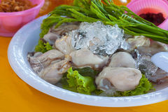 Oyster salad Royalty Free Stock Photography
