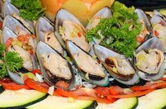 Oyster Salad Stock Photos