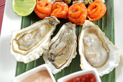 Oyster and salmon Royalty Free Stock Photo