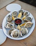 Oyster. Sea oysters with lemon on ice Stock Photos