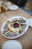 Oyster. Sea oysters with lemon on ice Royalty Free Stock Image