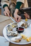 Oyster. Sea oysters with lemon on ice Stock Photography