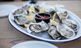 Oyster. Sea oysters with lemon on ice Royalty Free Stock Photo