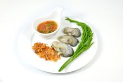 Oyster on white dish. Royalty Free Stock Image