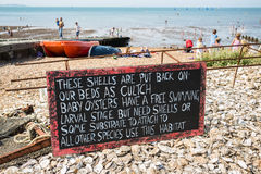 Oyster shell chalkboard sign in Whitstable Royalty Free Stock Photos