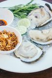 Oyster shell with spicy sauce Royalty Free Stock Photography
