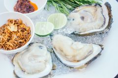 Oyster shell with spicy sauce Royalty Free Stock Photos