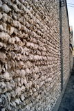 Oyster Shell Wall Royalty Free Stock Images