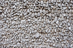 Oyster shell wall. Since Ming Dynasty, Pearl River Triangle Delta of Guangdong and the area along coast abound in oysters. People often use oysters' shells to Stock Image