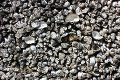 Oyster shell walls Royalty Free Stock Photo