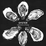 Template with edible oysters