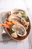 Oyster, shrimp and shellfish Stock Photos