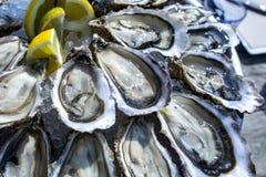 Oyster tray, Cap Ferret. France Stock Photos