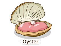 Oyster underwater animal cartoon illustration Stock Photo