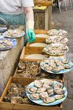 Oyster vendor Stock Photo