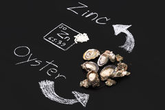 Oyster zinc supplementary food capsule periodic table Royalty Free Stock Photos