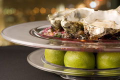 Oysters. A dish of oysters and lime Royalty Free Stock Image