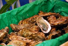 Free Oysters Royalty Free Stock Photo - 4785255