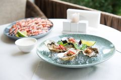 Oysters And Shrimp Plate On The Table Stock Photos