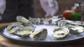 Oysters baked with cheese and herbs on plate in seafood restaurant. Food background. Chef cook decorating oysters stock footage