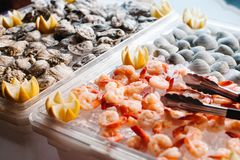 An assortment of cooked shrimp, raw oysters and clams on ice gar. Oysters, clams and shrimp on ice garnished with pieces of lemon Stock Image