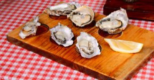 Oysters. Close up of a wooden plate of rock oysters with lemon slice stock photos