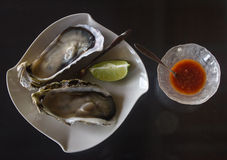 Oysters and Condiments for Lunch Royalty Free Stock Image